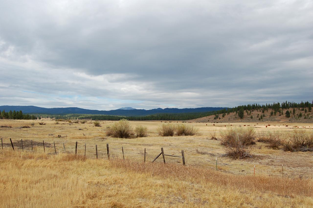 Plains between Sumpter and Tipton Pass
