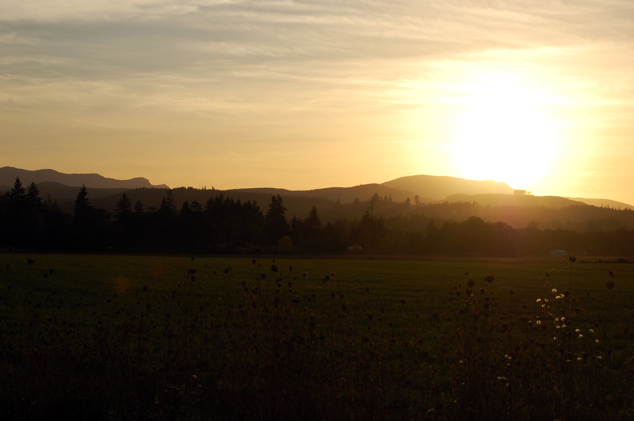 Chasing the sun again