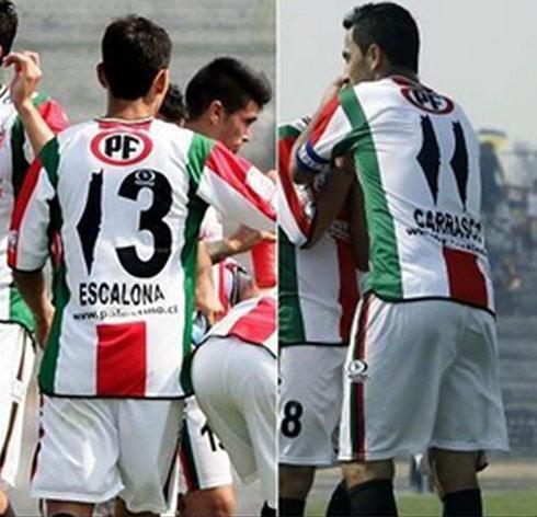 Club Deportivo Palestino de Chile