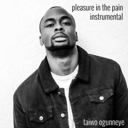 Instrumental Pleasure In The Pain   Taiwo Ogunneye