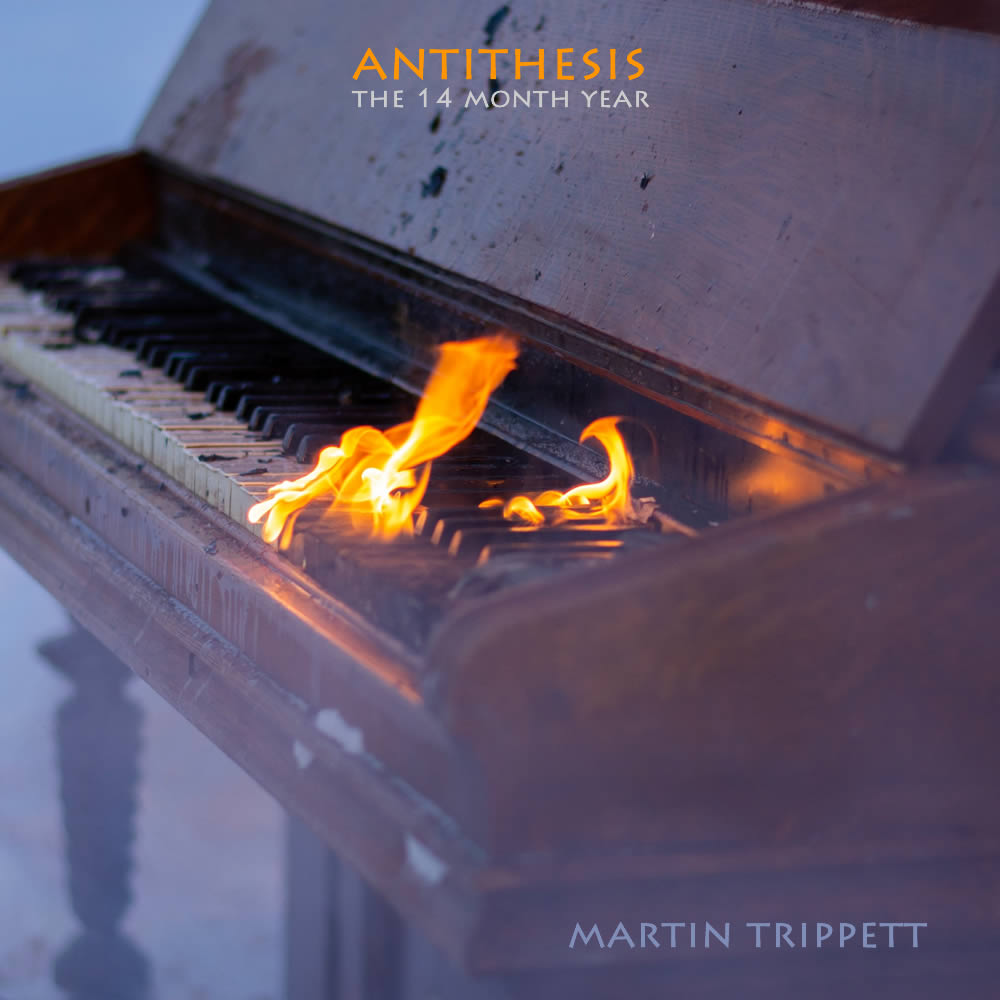 Antithesis – The 14 Month Year   Martin Trippett