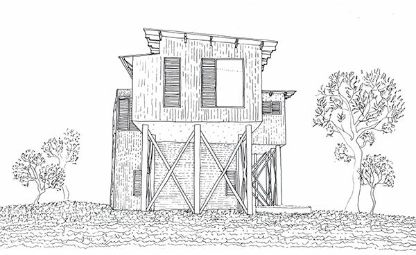 Peregian Beach House Sketch