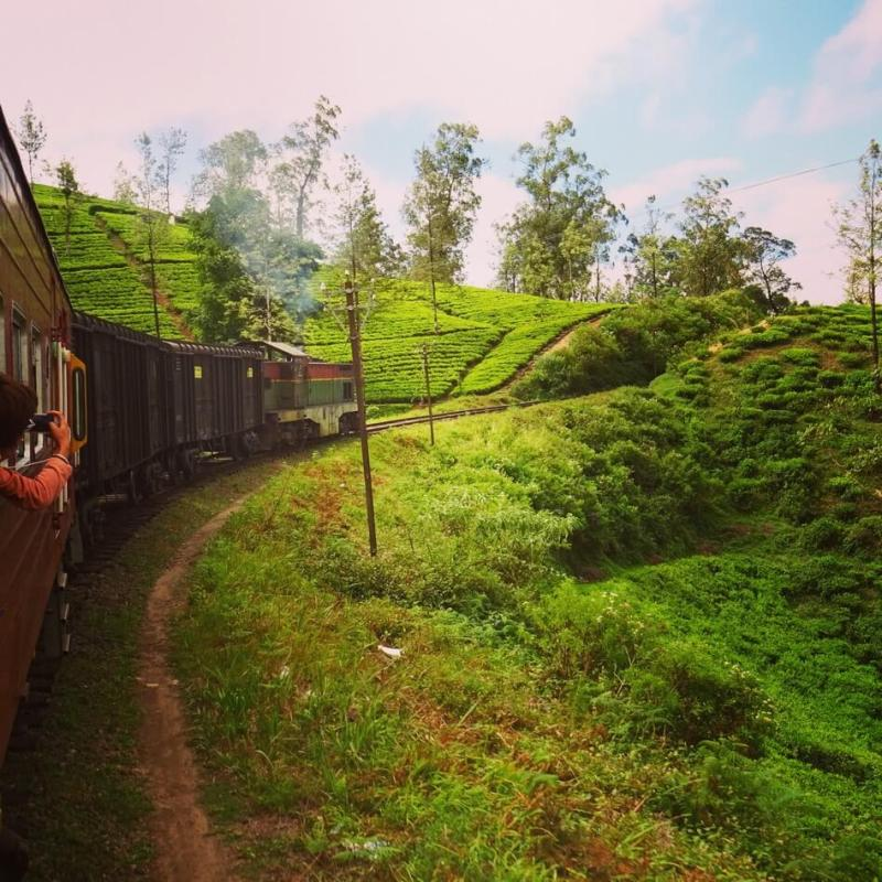 Train from Nuwara Eliya to Ella