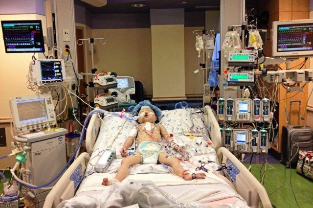 Lily-immediately-Post-Transplantedit