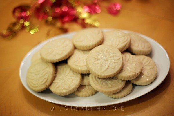 moon cookies 2