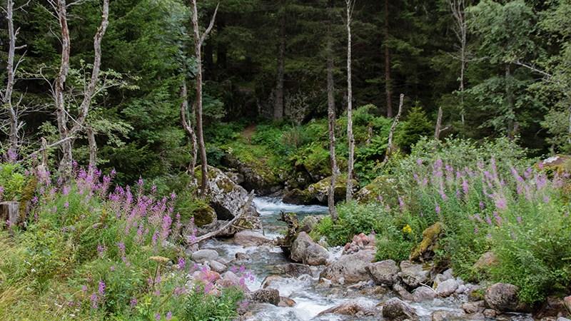 Val di Mello nature reserve