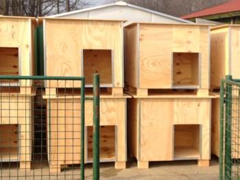 Dan velike donacije u Noinoj arci - nove kućice!