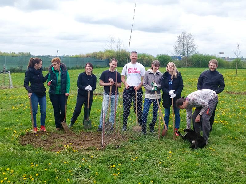 Zajednica POZA posadila stabla u našem prihvatilištu