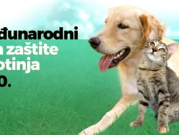 4.10. Međunarodni dan zaštite životinja