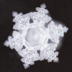 Masaru Emoto, vízkristályok, Szeretet