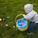 Tojásgyűjtés Húsvétkor