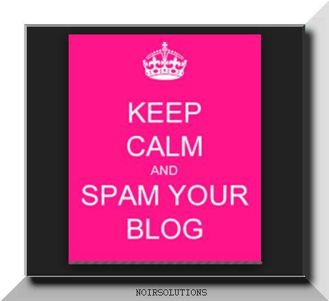 Frase sugli spamblog o splogger