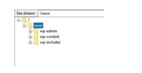 wordpress Filezilla
