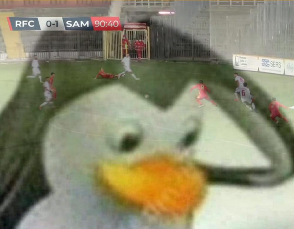 Pingu x Vernecchie rossoblu