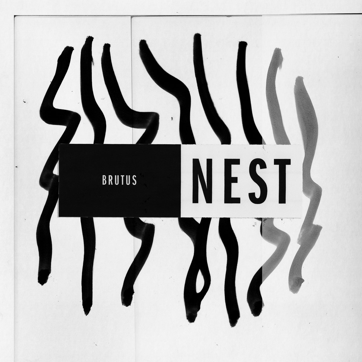 Chronique] Brutus - Nest | Noise Injection