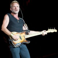 Sting photo by Ros O'Gorman