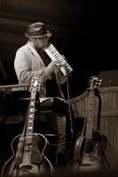 Steve Nieve, Deni Blues 2014, Photo, Ros O'Gorman