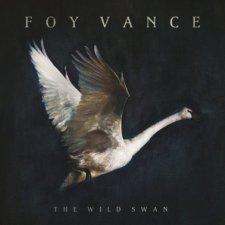 Foy Vance The Wild Swan