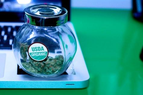 Organic Weed Jar
