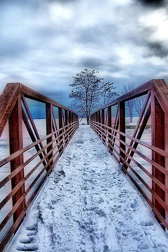 Red bridge snow by Liz