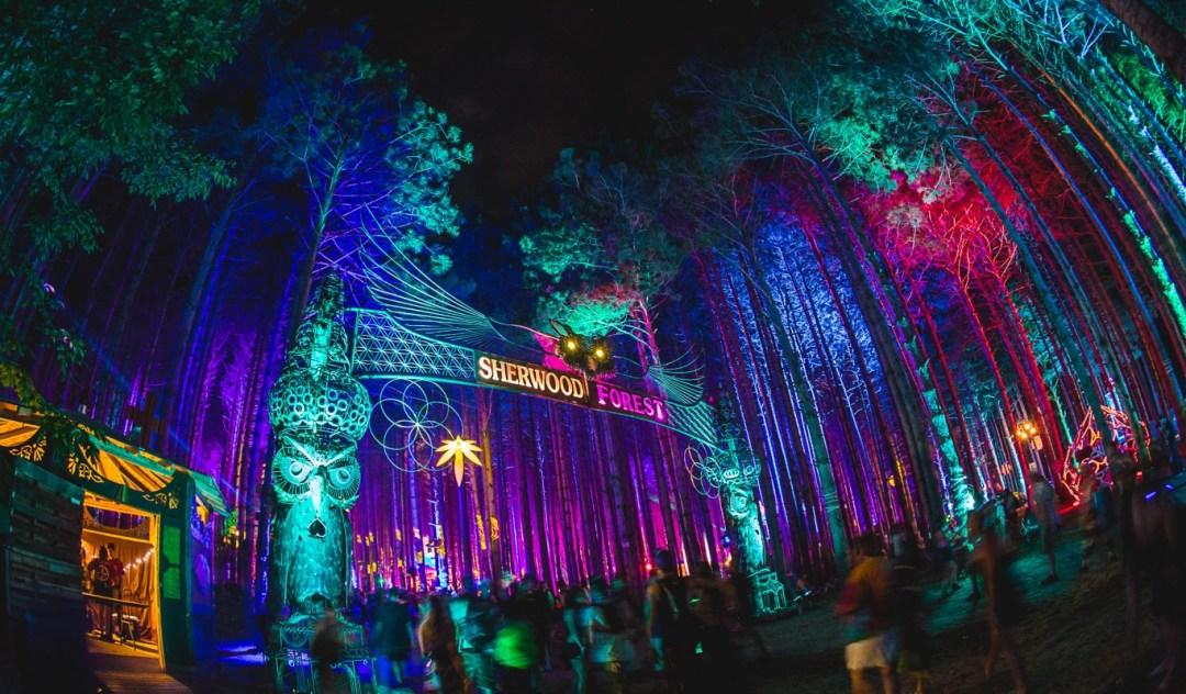 Resultado de imagem para Electric Forest Festival