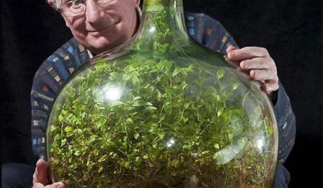 giardino in bottiglia