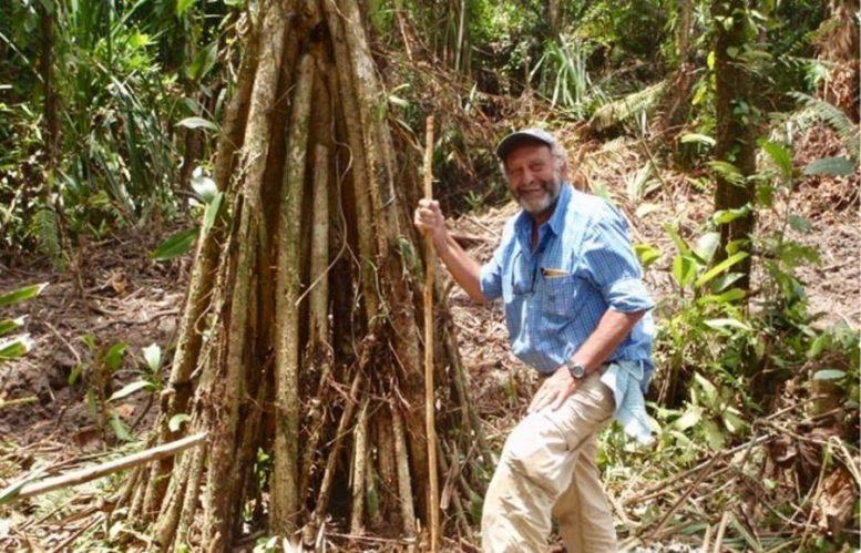 Il ricercatore Stephen Haggerty accanto al Pandanus Candelabrum, la pianta che cresce sopra i diamanti