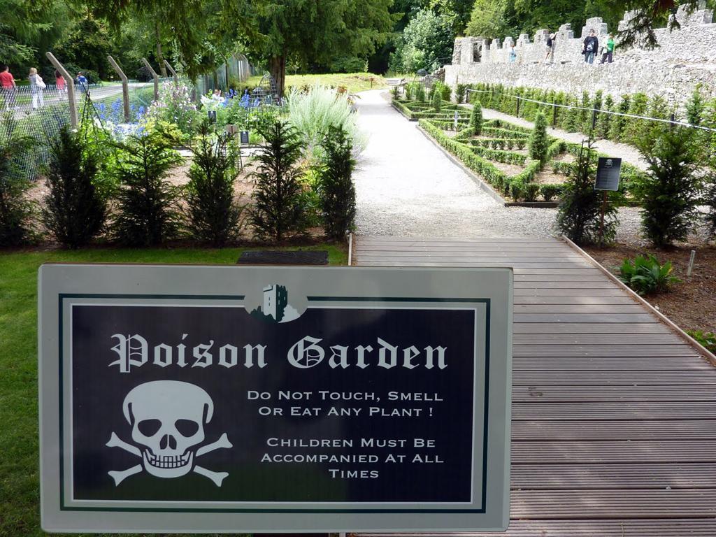 poison garden giardino dei veleni alnwick