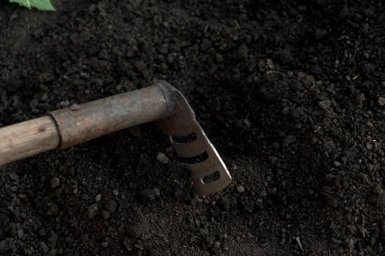 rigenerare un terreno inquinato