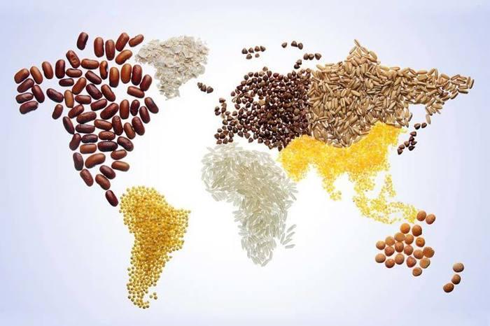 agricoltura sostenibile soluzione per il problema della fame nel mondo