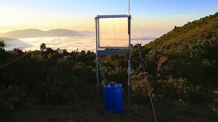 nebbia possibile fonte di acqua pura