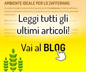 Visita il Nostro Blog!