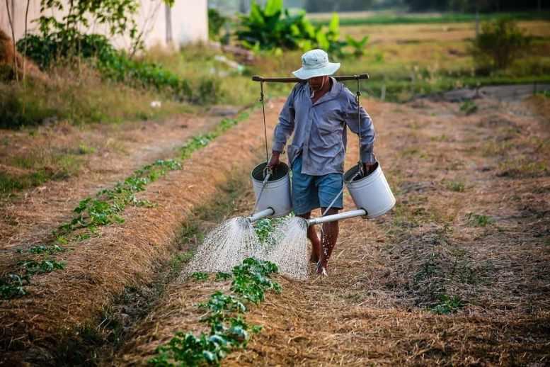 a chi spetta disoccupazione agricola