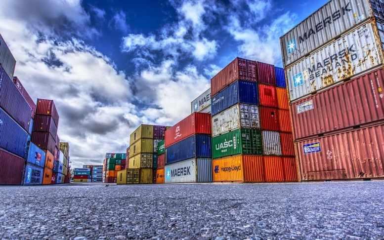 esportazione ortaggi