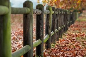 come recintare un terreno agricolo
