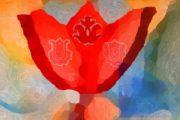 Szív és Méh meditáció