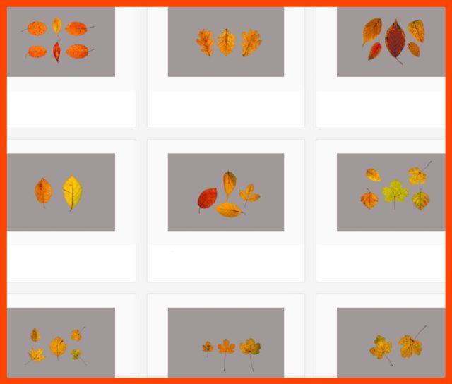 Kleine Auswahl meiner neuen Bilder bei Adobe-Stock