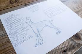 Levi's custom dog breed with stats