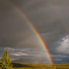 Two pots of gold (454F12465)
