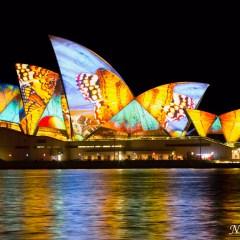 Sydney Opera House - Vivid Sydney 2014 (3J8A01356)