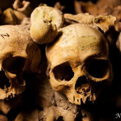 Human remains in Catacombes de Paris (454F34174)