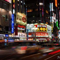 Shinjuku neon (454F42510)