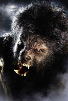 el hombre lobo rostro