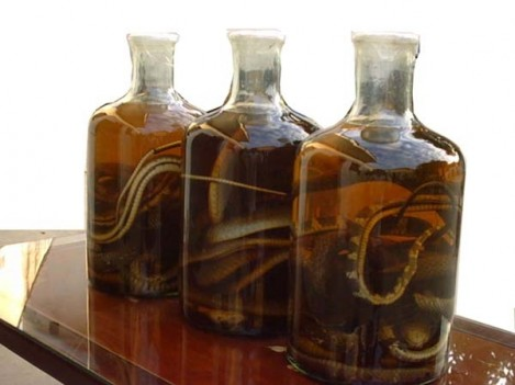 vinos de serpiente
