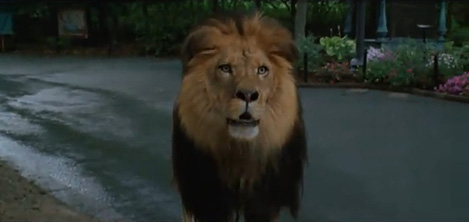 zookeeper 4