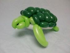 turtle-