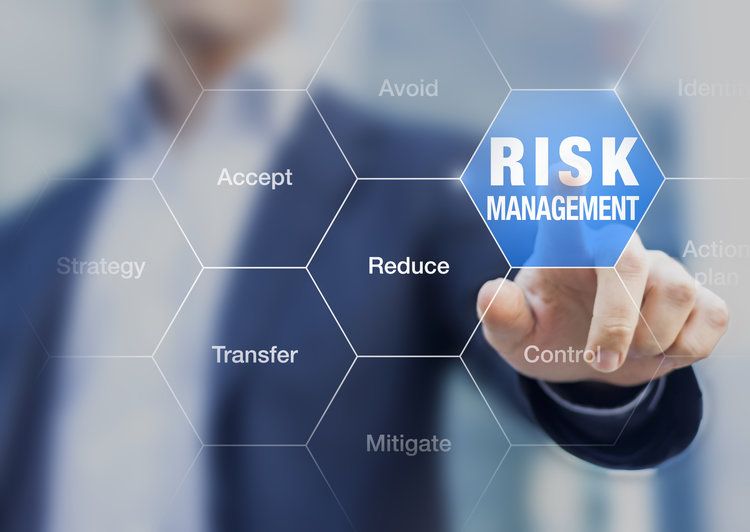 Risk management for small and mid-size businesses