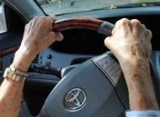 man's hand on steer
