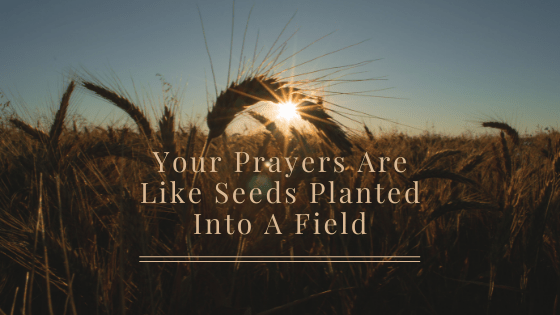 Your Prayers Are Like Seeds Planted Into A Field