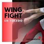 Clases de Wing-Fight en Toledo